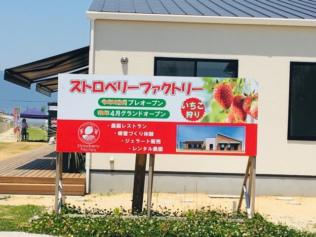 strawberry factory