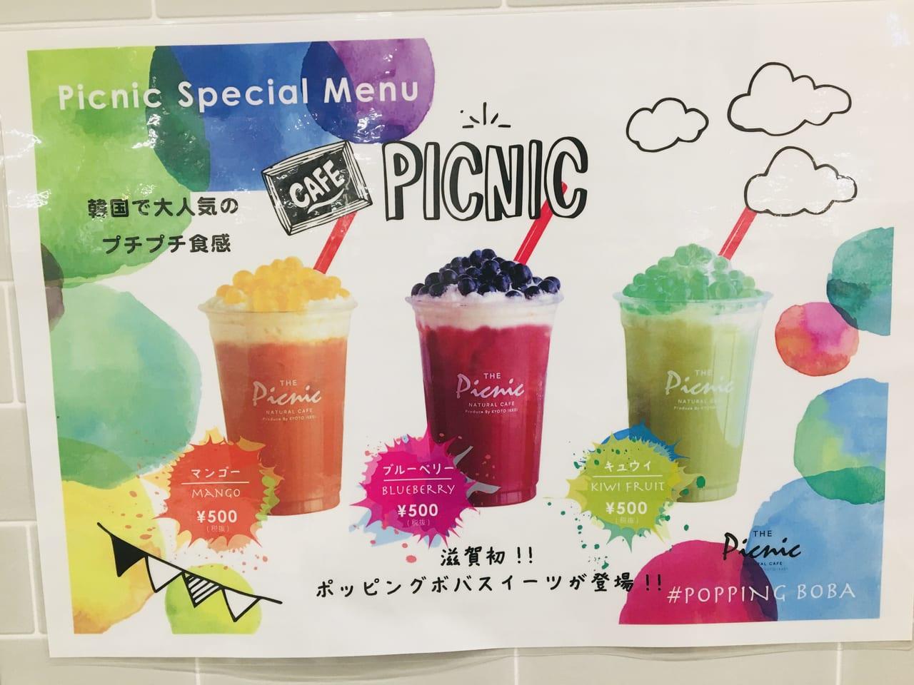 picnic boba
